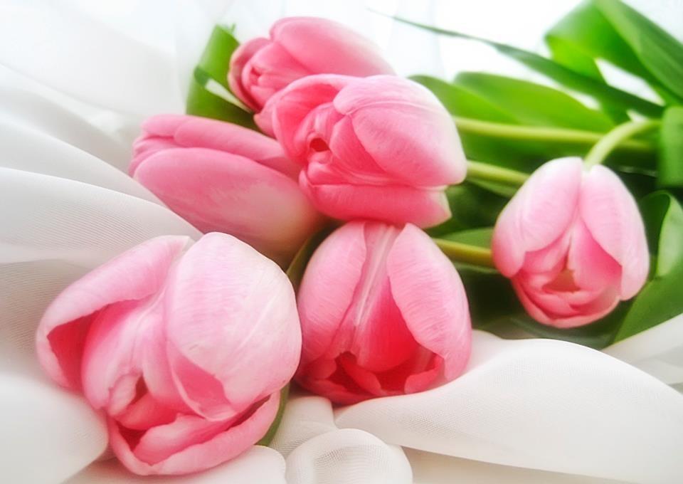 С наступающим праздником 8-марта!!!
